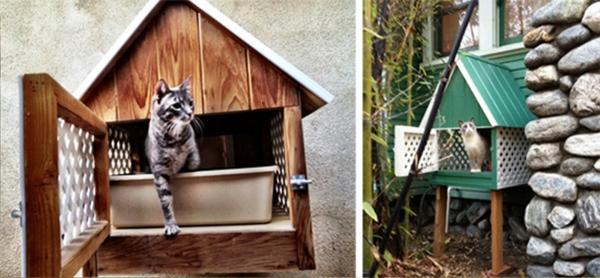 maisonnette-pour-chat-maisonnettes-intéressantes