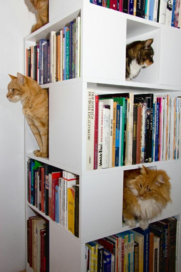 maisonnette-pour-chat-mobilier-pour-chats-original