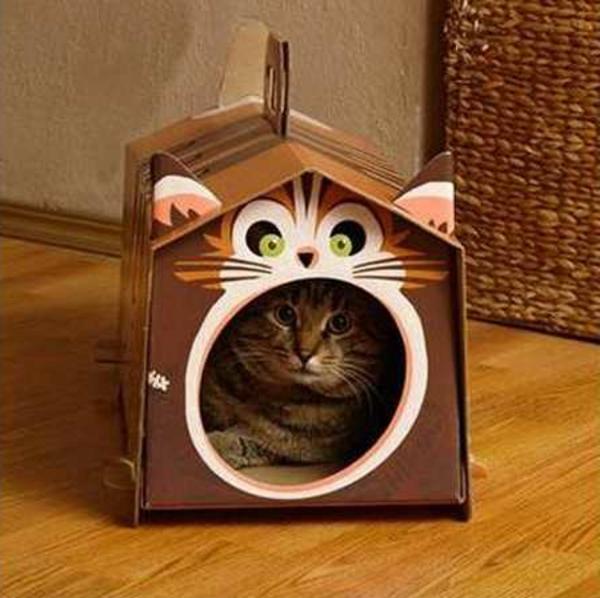 maisonnette-pour-chat-portable