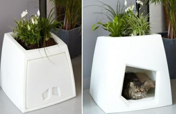 maisonnette-pour-chat-pot-de-fleur