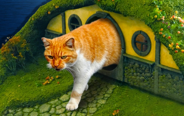 Choisir une maisonnette pour chat for Construire une maison de hobbit