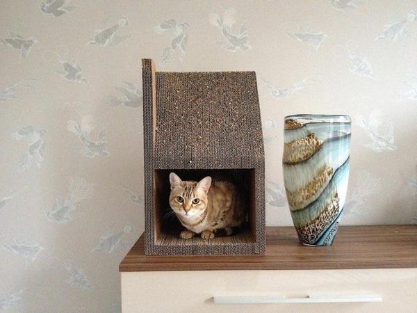 maisonnette-pour-chat-unique-en-carton