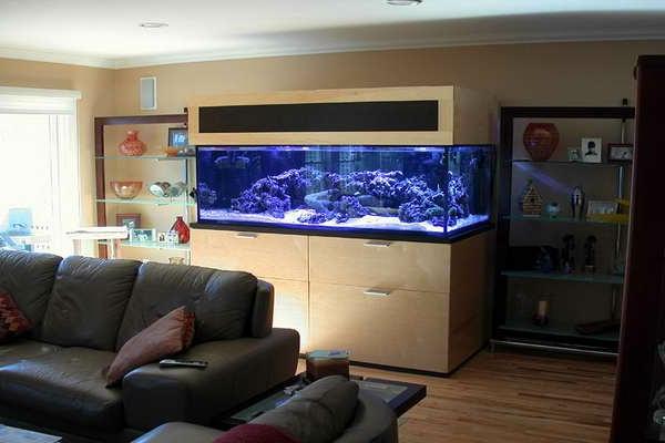 meuble-aquarium-aquarium-original