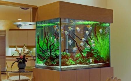 La Decoration Avec Un Meuble Aquarium Archzine Fr