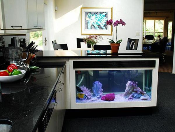 meuble-aquarium-dans-la-cuisine