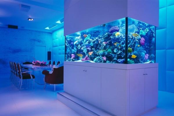 meuble-aquarium-dans-une-chambre-blanche