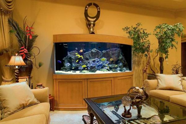 meuble-aquarium-intérieur-cosy-unique