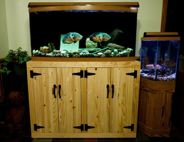 meuble-aquarium-jolies-poissons