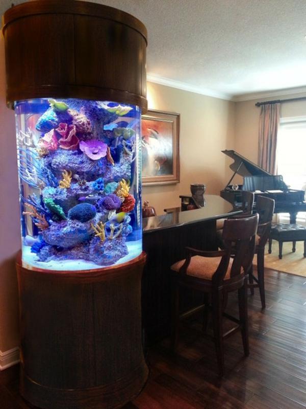 Aquarium Moderne