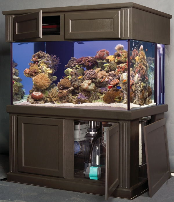 meuble-aquarium-original