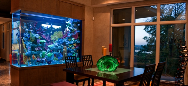 La d coration avec un meuble aquarium for Aquarium interieur