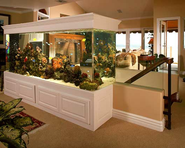 la d coration avec un meuble aquarium. Black Bedroom Furniture Sets. Home Design Ideas