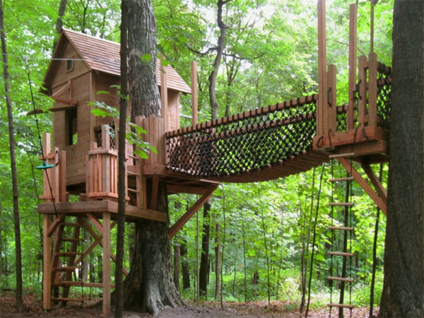 mn-treehouse-overview-1a-resized