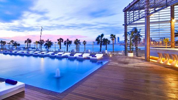 piscine-en-bois-rectangulaire-palmiers