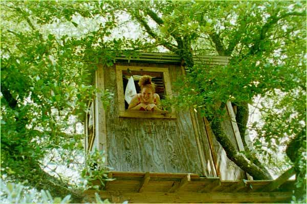 vintage-style-maison-dans-les-arbre-en-plein-forêt
