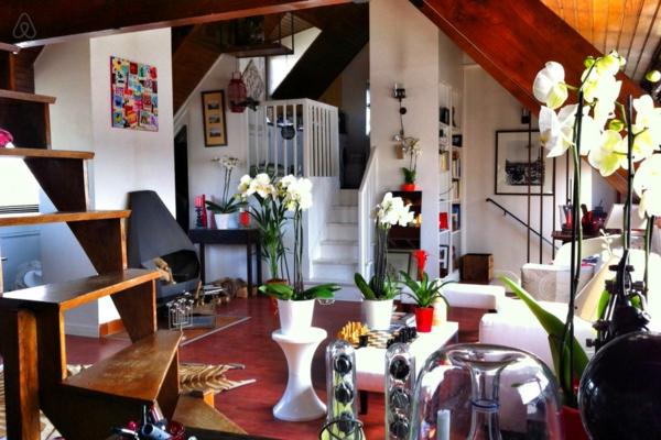 appartement-atypique-à-Paris-style-déco-unique