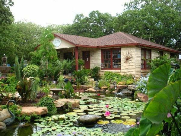 jardin aquatique, une piscine vivante devant la maison