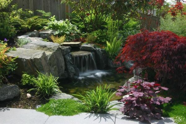 jardin-aquatique-cascades-et-plantes-magnifiques