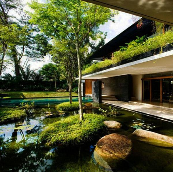 jardin-aquatique-contemporain-petites-îles-verts