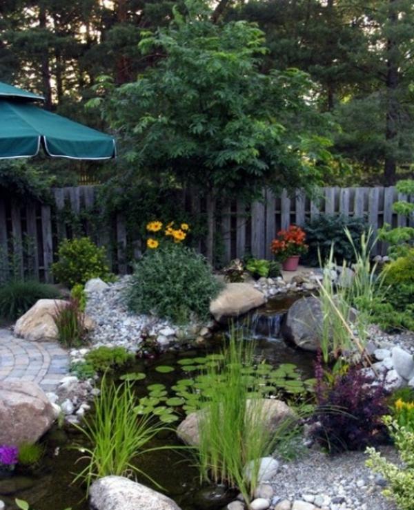 jardin-aquatique-design