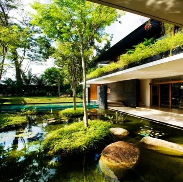 jardin-aquatique-devant-une-maison-contemporaine