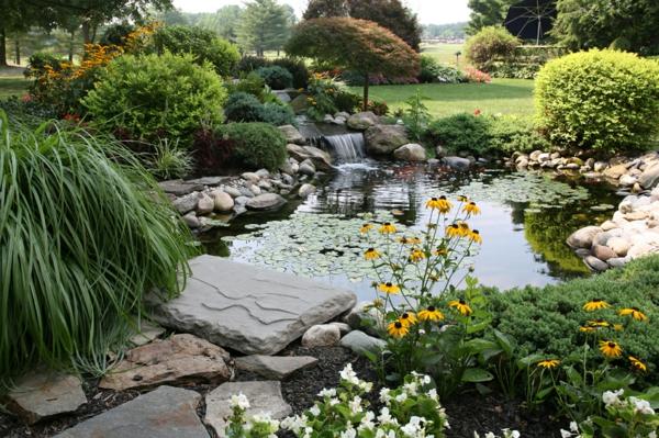 jardin-aquatique-espace-joli-extérieur