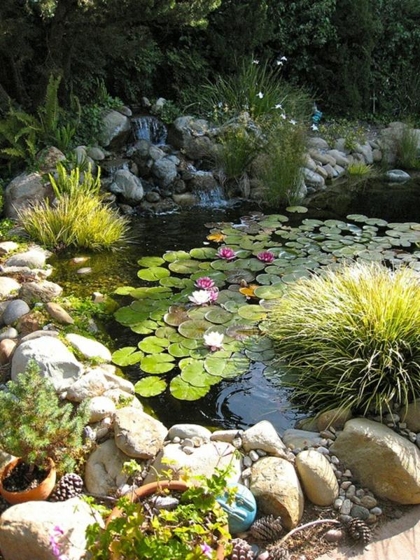 jardin-aquatique-le-lotus-mythique-décoration-avec-des-pierres