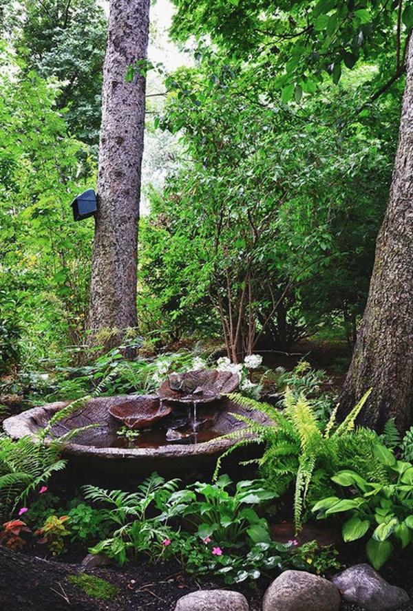 jardin-aquatique-petite-fontaine-en-pleine-nature