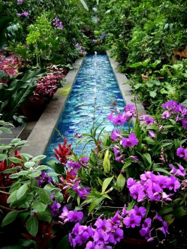 jardin-aquatique-un-canal-d'eau-et-des-fleurs