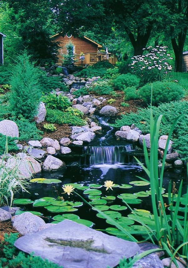 jardin-aquatique-un-fleuve-vertical