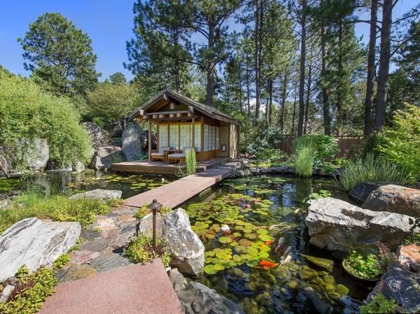 jardin-aquatique-un-grand-lac-avec-allée