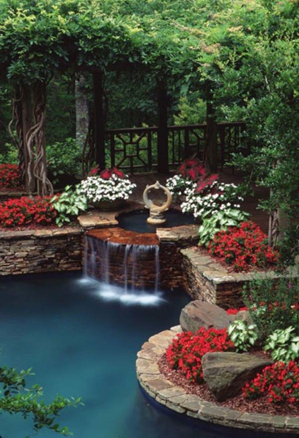 jardin-aquatique-un-jardin-splendide