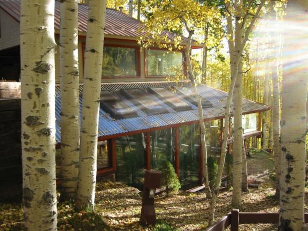 maison-passive-bâtiment-passif-dans-la-forêt