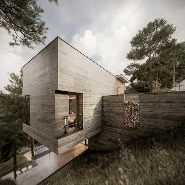 maison-passive-unique-design-élégant
