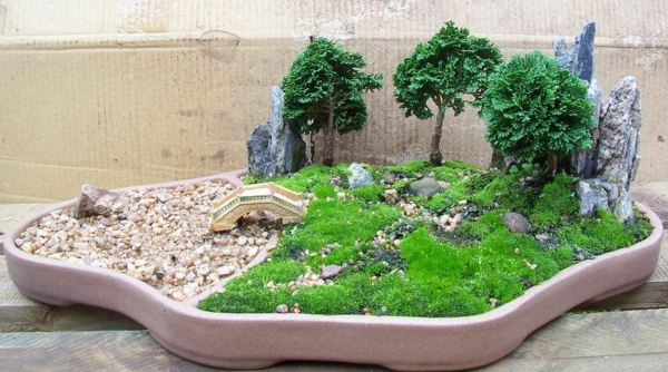 mini jardin japonais pierres et pont bonsais verts