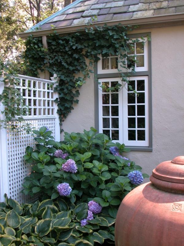 treillis-de-jardin-blanc-et-un-grand-pot