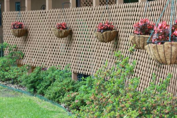 treillis-de-jardin-et-pots-de-fleurs-suspendus