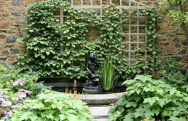 Croisillons bois pour plantes grimpantes for Bassin de jardin facile