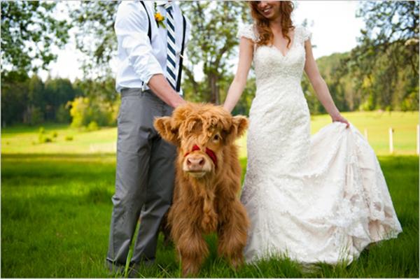 unique-design-pour-votre-mariage-dans-la-provance-et-mode-de-maraige