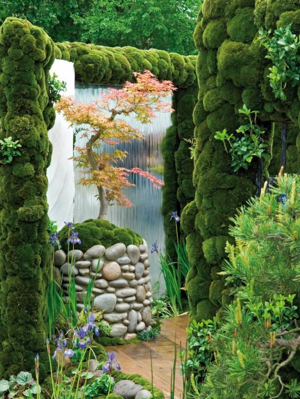 érable-japonais-décoration-japonaise-magnifique
