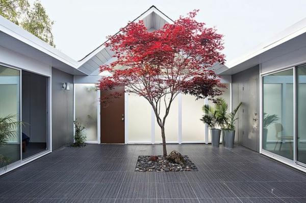 érable-japonais-décoration-moderne-avec-érable-japonais