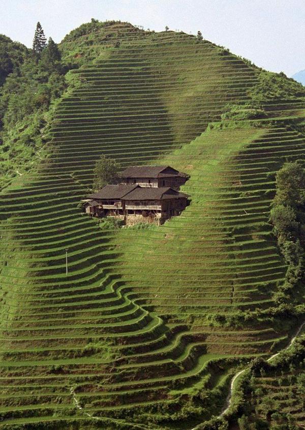 1-architecture-japonaise-extaordinaire