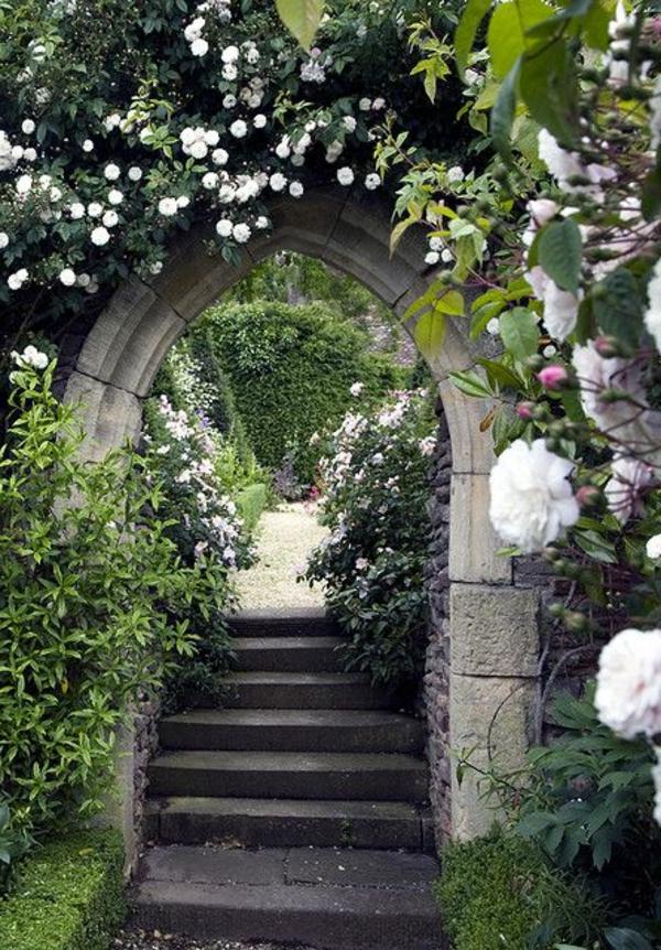 1-haie-de-jardin-avec-roses-blanches
