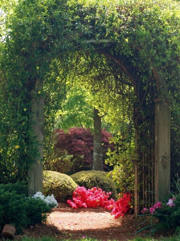 Des id es originales pour haie de jardin for Jardin original