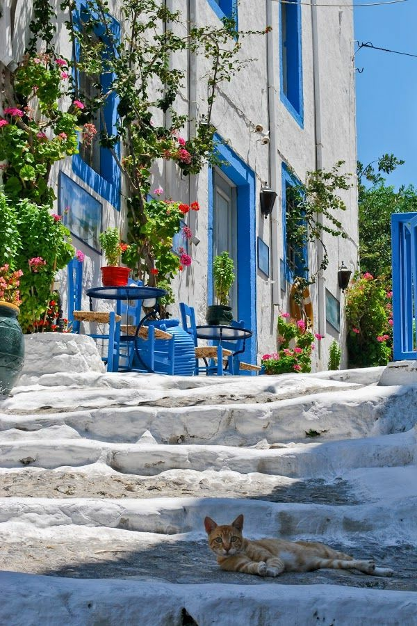 1-rue-grecque-architecture-ancienne
