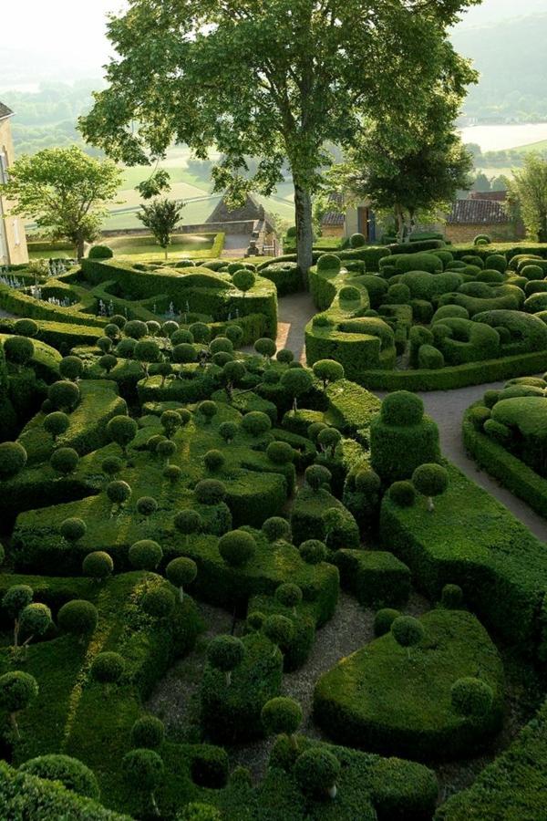 2-haie-de-jardin-verte