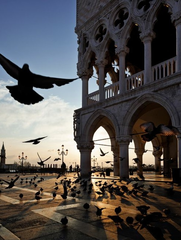 3-une-place-oiseaux-ville-romantique-Belle-Venise