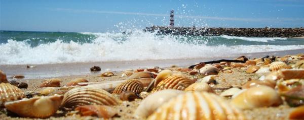 algarve-phare-shelfs-la-mer-océan-sable