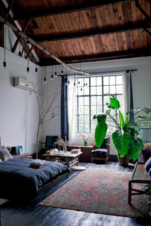plante-verte-d'intérieur-ambiance-joviale-nature-plante-verte-d-intérieur