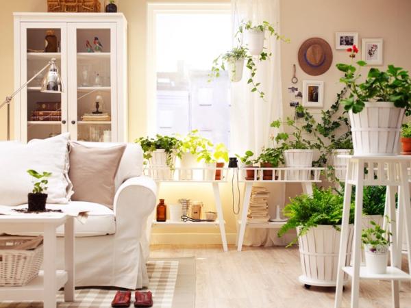 ambiance-nature-plante-verte-d-intérieur-sofa-séjour